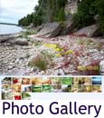 Lake Michigan rental cottage slideshow